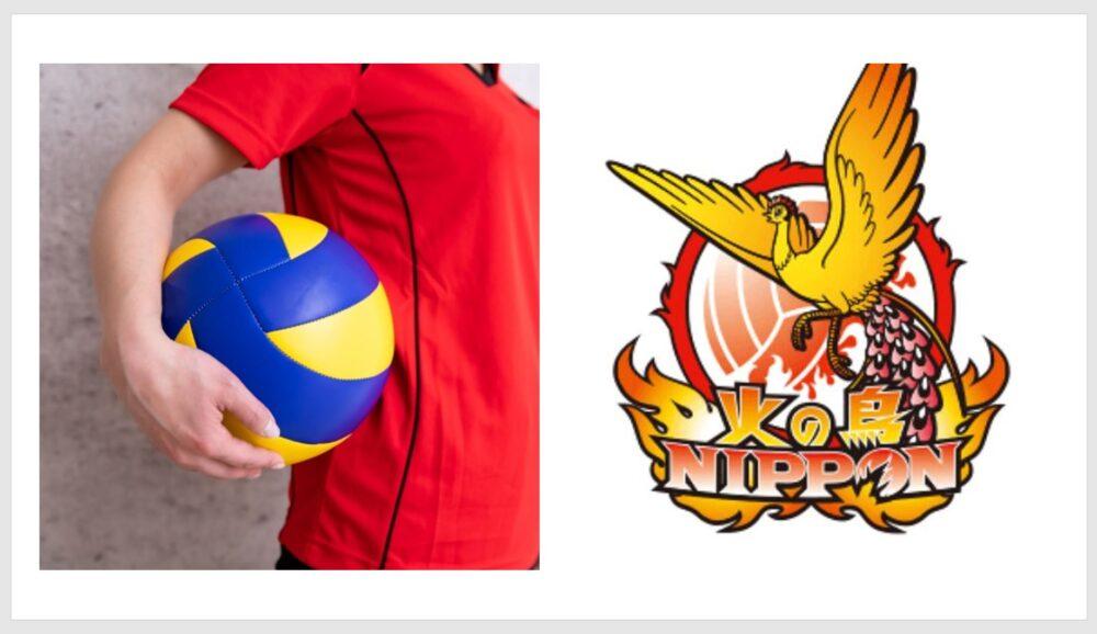 バレーボール女子日本代表,火の鳥nippon