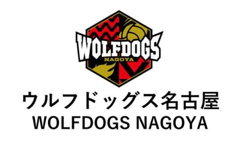 ウルフドッグス名古屋,WOLFDOGS NAGOYA