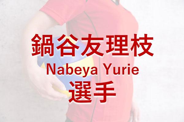 鍋谷友理枝,女子バレーボール選手