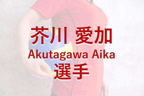 芥川愛加,女子バレーボール選手