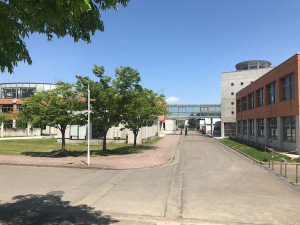 宮城県東北高校