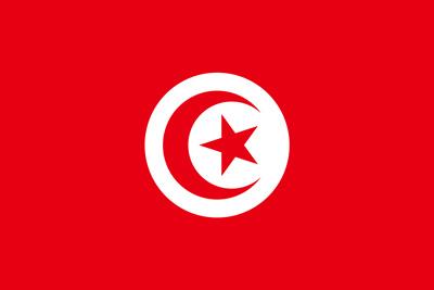 バレーボールチュニジア代表(東京オリンピック2020-2021出場選手)